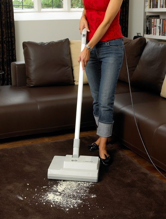 Duo Dry Carpet Cleaning Machine Domestic